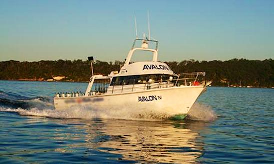 55' Sportfishing Charter In Merrylands