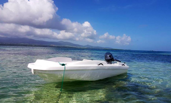 Enjoy Guided Tour On Dinghy In Sainte Rose, Guadeloupe
