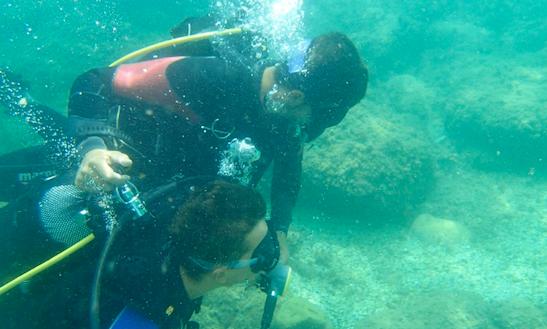Enjoy Diving In Scopello, Italy
