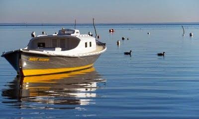 Charter 33' Segues Inboard Propulsion in Lège-Cap-Ferret, France