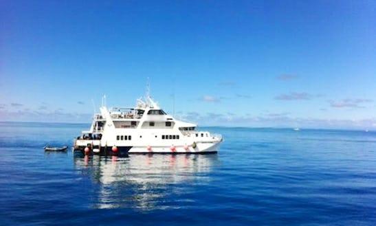 Liveaboard Dive & Snorkel Trips In Queensland