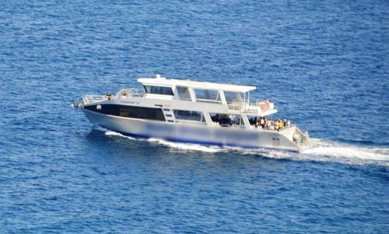 Diving Tours And Courses In Balcatta, Western Australia