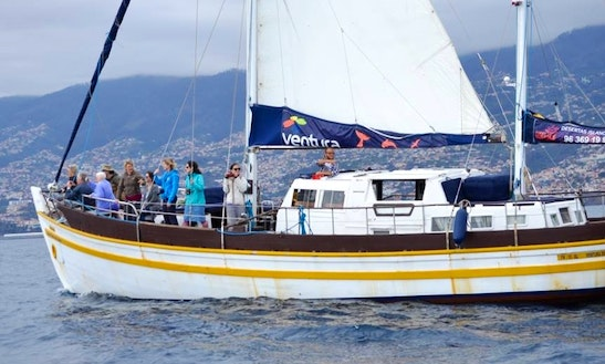 Charter A Gulet In Funchal, Portugal