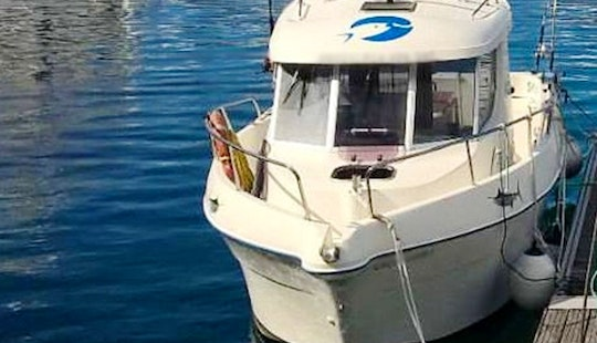 Go Fishing With A Group Of 8 People In A Cuddy Cabin Charter In Azores, Portugal