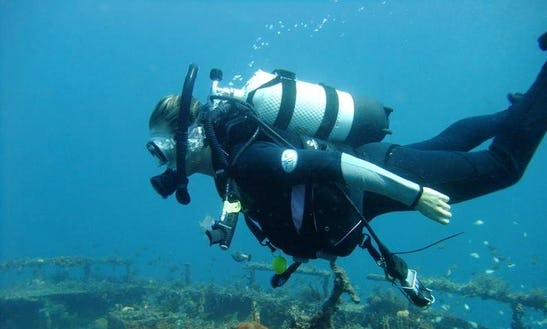 Enjoy Diving Trips In Bunbury, Australia