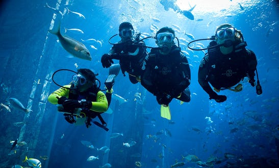 Exciting Diving Holiday Trips In Red Sea Governorate, Egypt