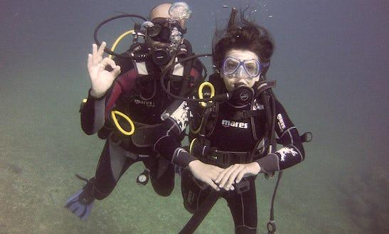 Enjoy Diving In Leuca, Puglia