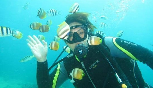 Enjoy Diving In Malay, Philippines