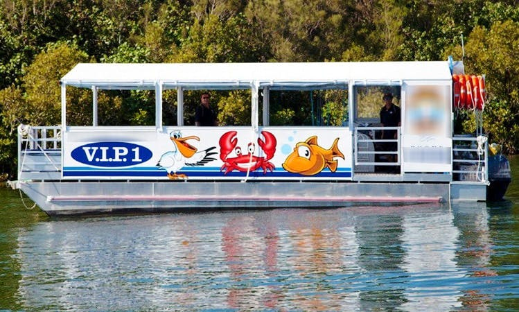 Enjoy Fishing in Tweed Heads, New South Wales on Pontoon Boat