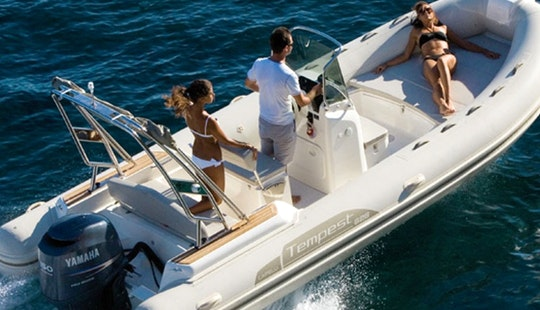 Rent 21' Cappelli Rigid Inflatable Boat In Ajaccio, France