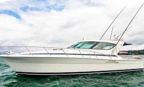 Charter A Levante Motor Yacht In Taupo, New Zealand