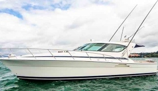 Charter A Rivera 4000 Offshore Sedan Motor Yacht In Taupo, New Zealand