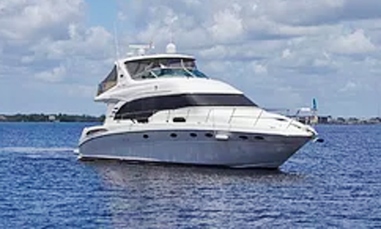 Motor Yacht For Rent In Toronto