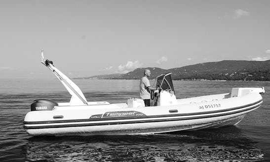 Rent 21' Semi-rigid Capelli 625 Rigid Inflatable Boat In Propriano, France