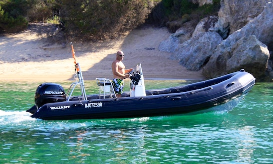 Rent 31' Semi-rigde Blak Fin Rigid Inflatable Boat In Propriano, France