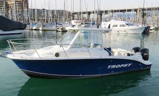 26ft Bayliner Trophy Walkaround Pro Sportfisherman Boat Charter In Vancouver, British Columbia