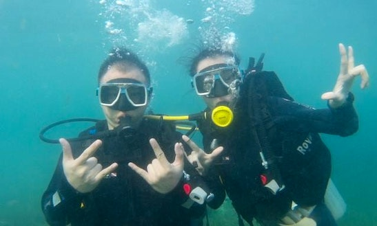 Enjoy Diving In Lapu-lapu City, Philippines