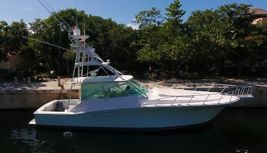 Luxury Yacht At Cozumel Dive Snorkel Fishing
