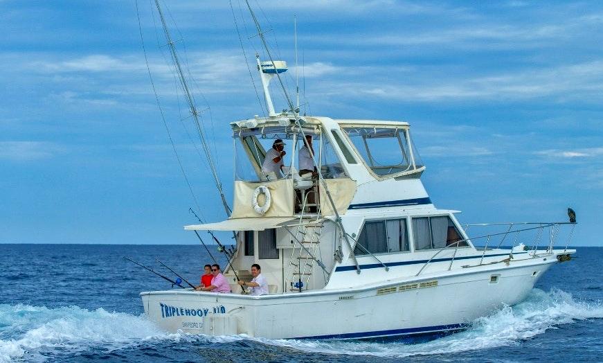 40 Foot Power Boat Rentals >> Charter 40 foot Fishing Boat Cabo San Lucas   GetMyBoat