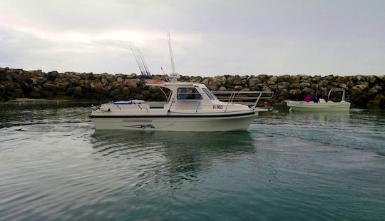 Adelaide Fishing Charters On 25' Witchcraft Boat