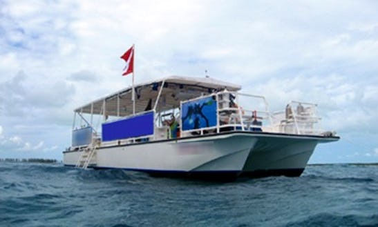 Dive Boat Iii - Diving Trips In Fort Lauderdale