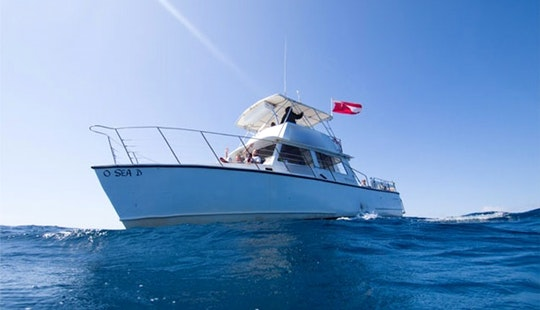 Diving Trip On 42ft