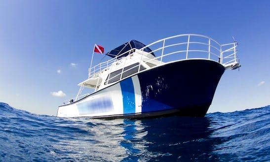 Boat Diving Charter On 46ft 'sea Siren' Trawler In Pompano Beach, Florida