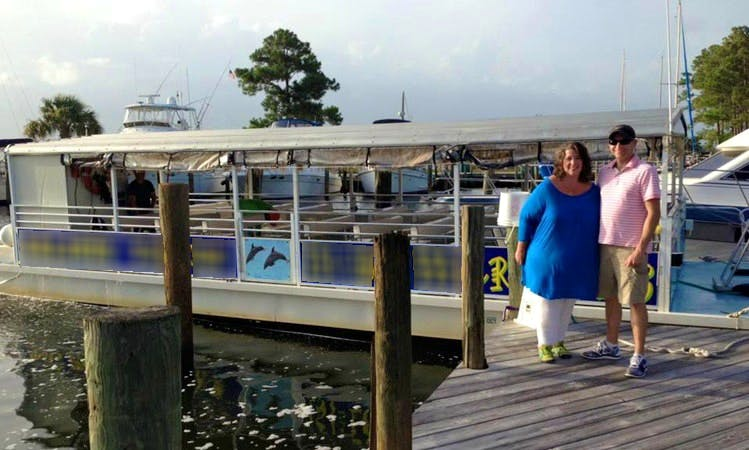 'Dolphin Tales' On Pontoon Wildlife In Orange Beach, Alabama