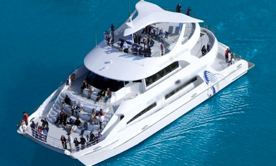 Charter 79' Power Catamaran In Australia's Gold Coast