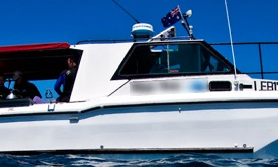 Diving & Whale Watching Charter In Australia, Brunswick Heads