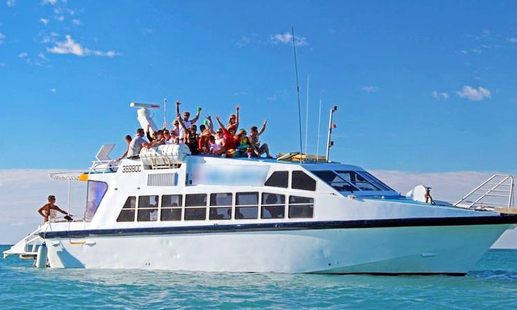 56' Whale Watching Tour Boat In Southport