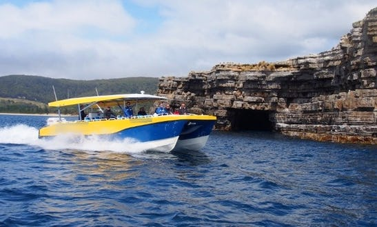 'the Blade' Catamaran Three Capes Track Experience In Hobart
