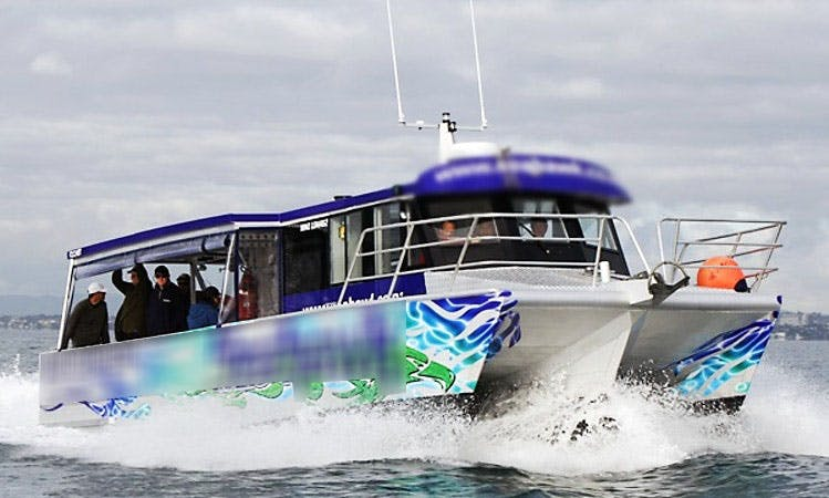 Auckland and Hauraki Gulf Fishing Charter with Captain Lenny