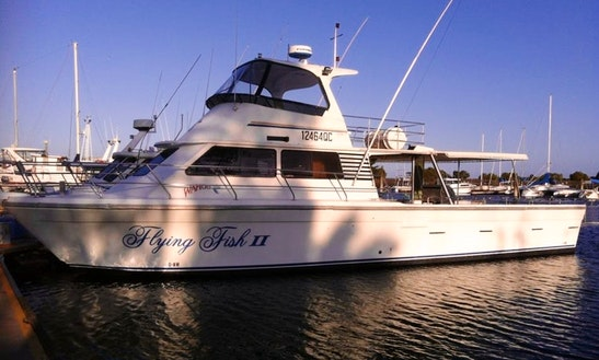 Hasting Fishing Charter On 50' Flying Fish Ii Boat With Skipper Rob