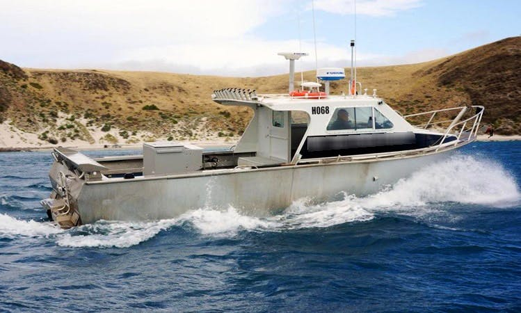 Fishing Trips Charter in Cape Jervis