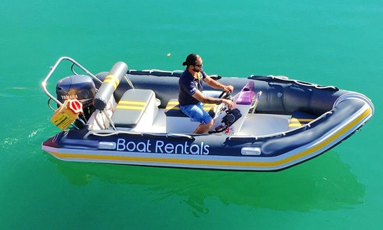 Rent A Semi-rigid Rubber Ducks For 5 Person In Cape Town, South Africa