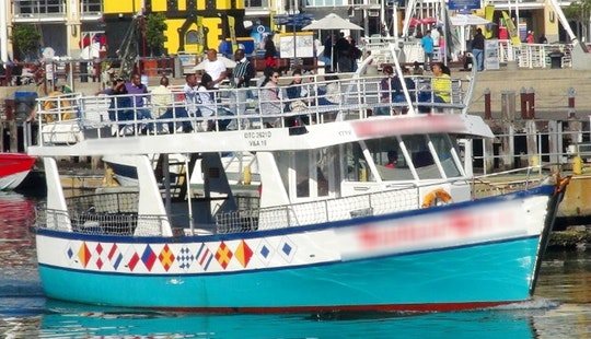 Captained 45' Southern Cross Motor Cruiser Charter In Cape Town, South Africa