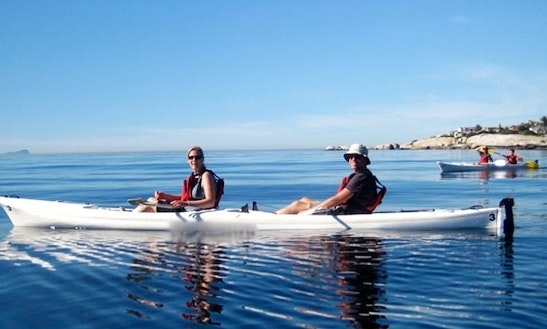Kayak Paddleing Tours In Cape Town