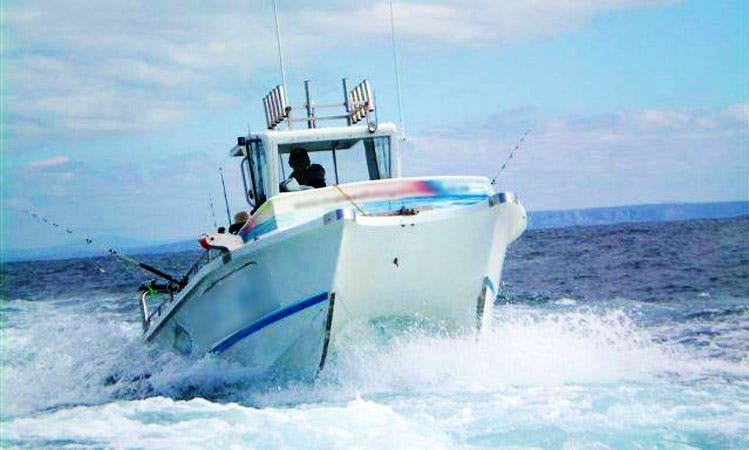 Enjoy Fishing in Struis Bay, Western Cape on a Power Catamaran