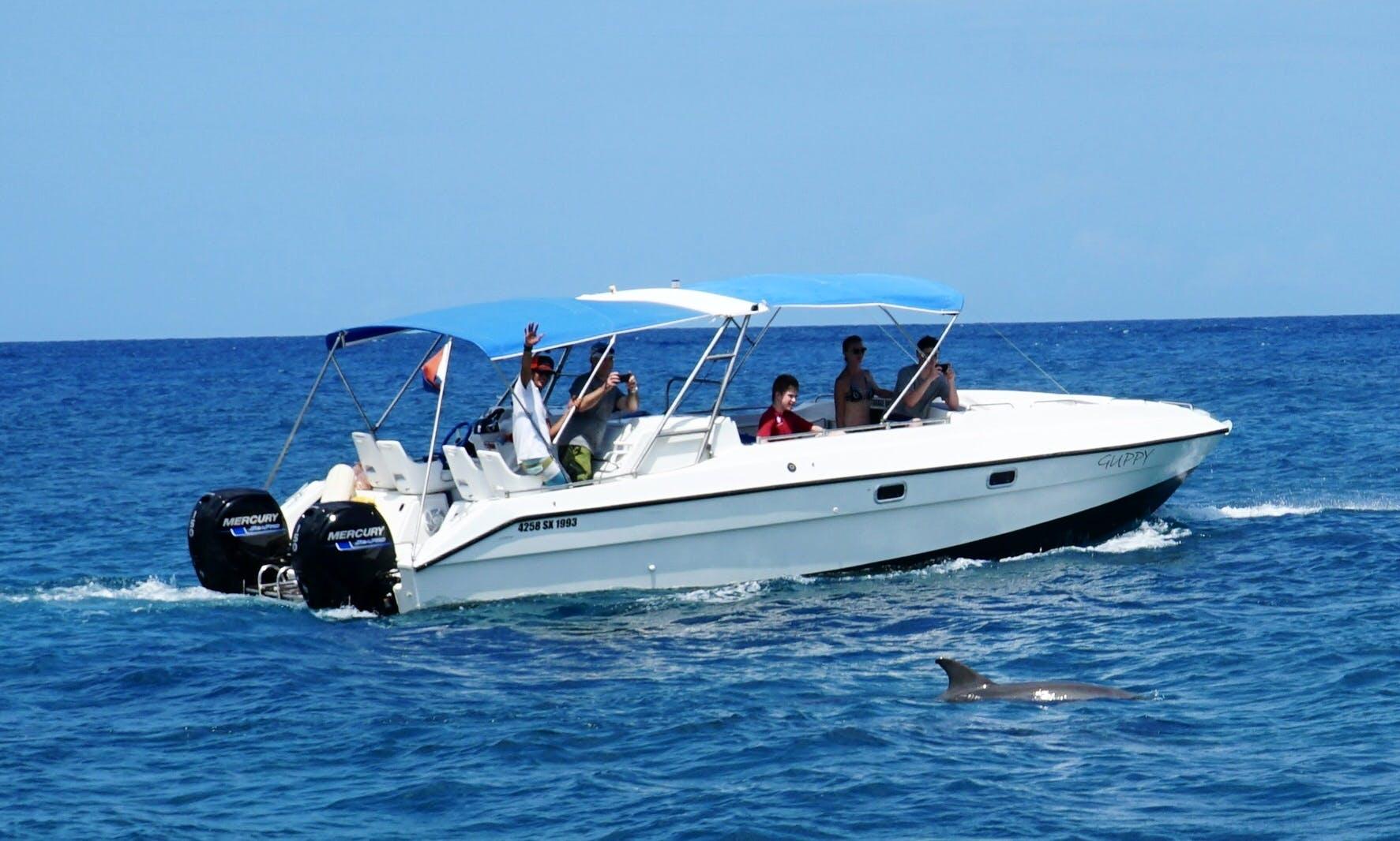 Power Catamaran for rent in Grand-Case, Saint Martin