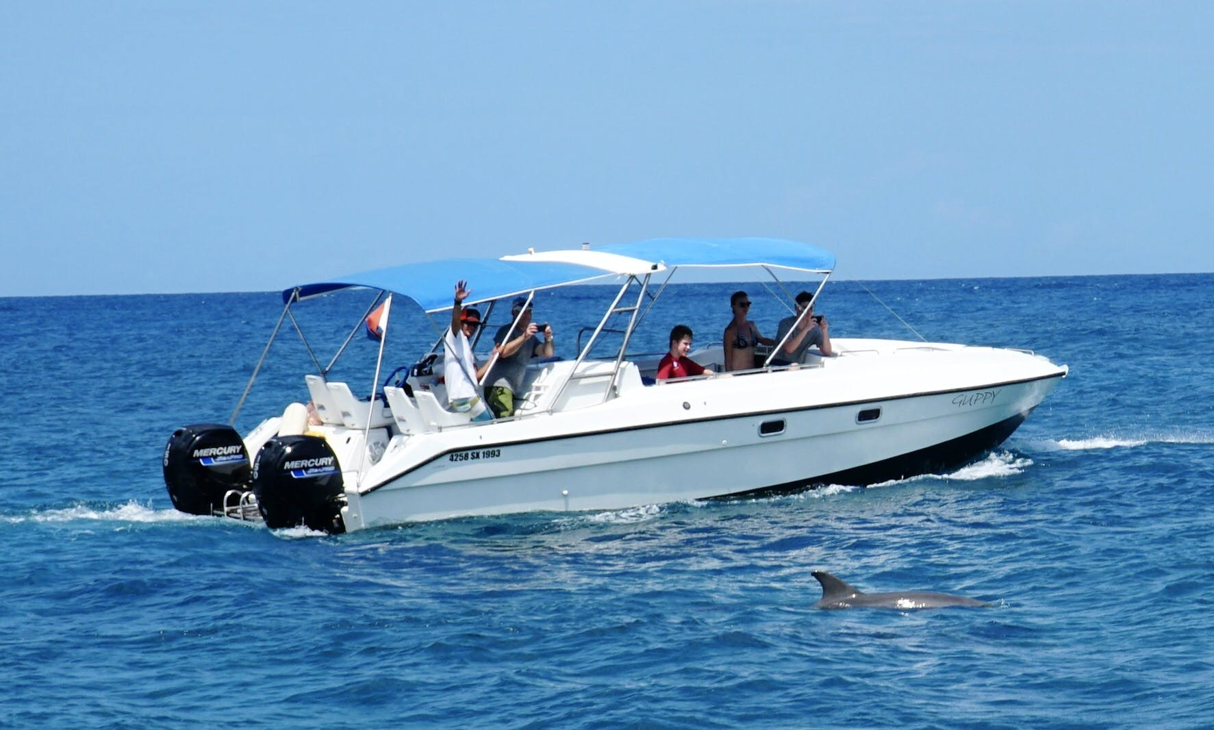 Power Catamaran for rent in Grand-Case, Saint Martin