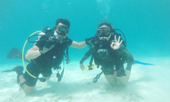 Enjoy Diving In Oslob, Philippines