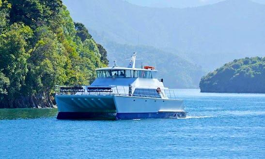 Power Catamaran Cruises On 'odyssea' Boat In Grovetown