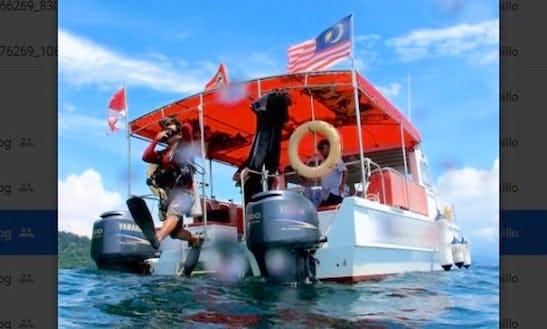 Leisure Diving Trip In Kota Kinabalu