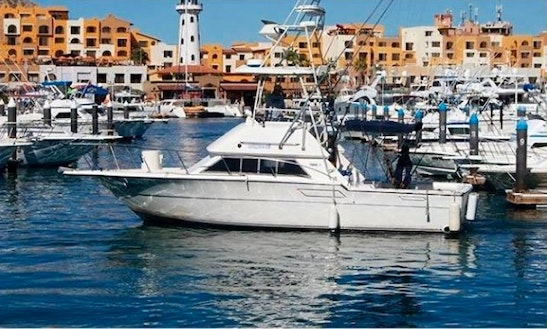 Fishing Charter On 33ft Hatteras Yacht In Cabo San Lucas, Mexico
