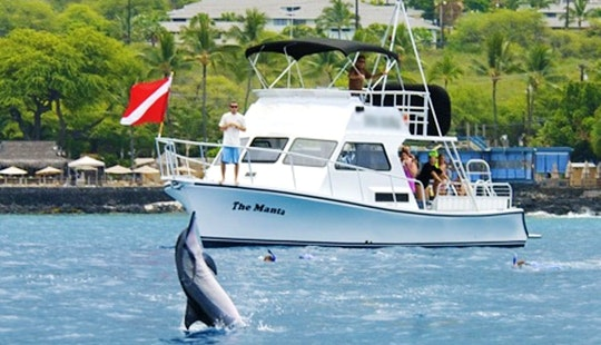 Reep And Dolphin Snorkel Tour In North Kona