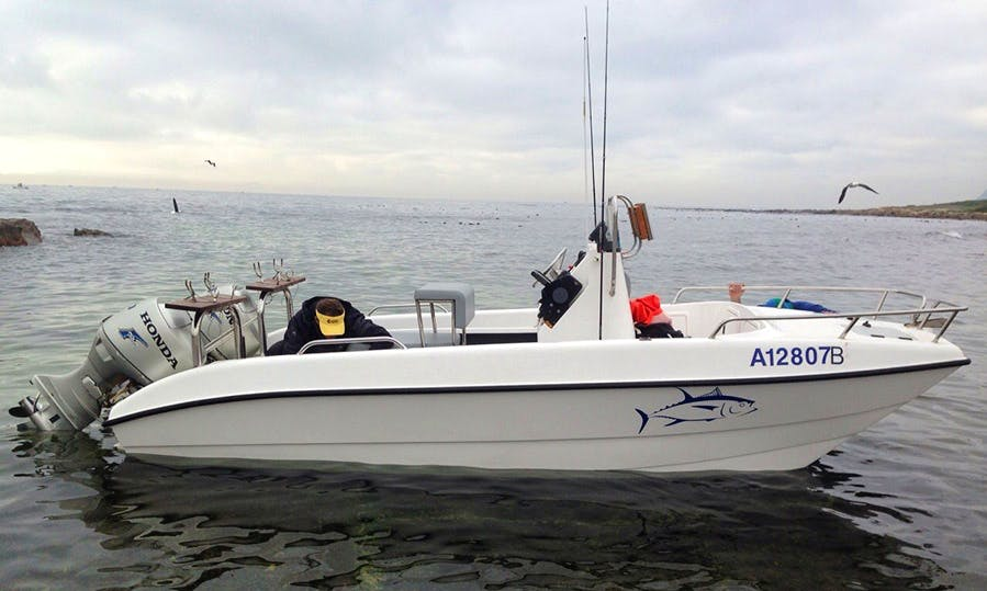 Enjoy Fishing in Hout Bay, Western Cape on Center Console