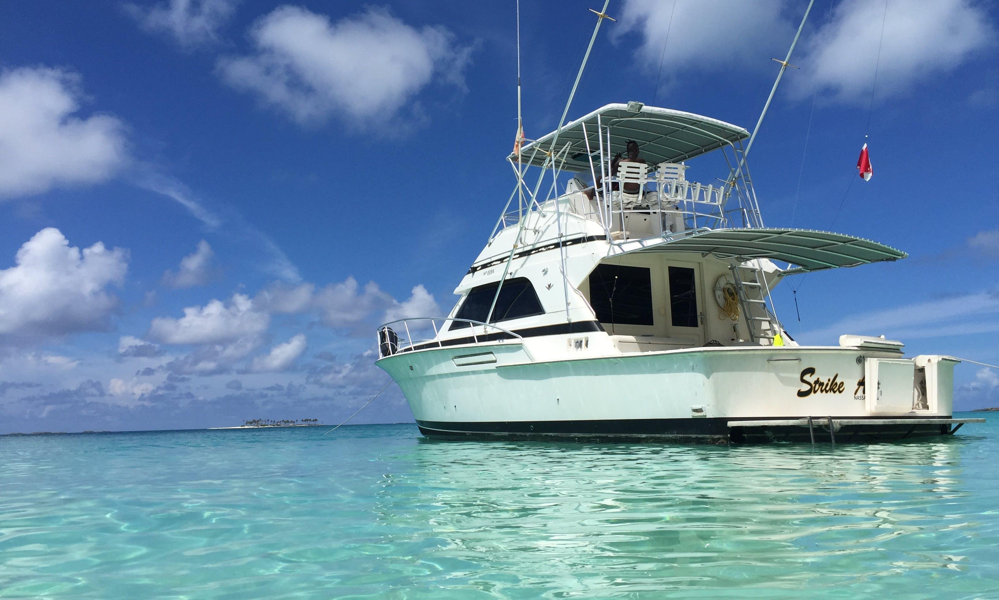 Deep Sea Fishing 43' Bertram Nassau First Strike Charters