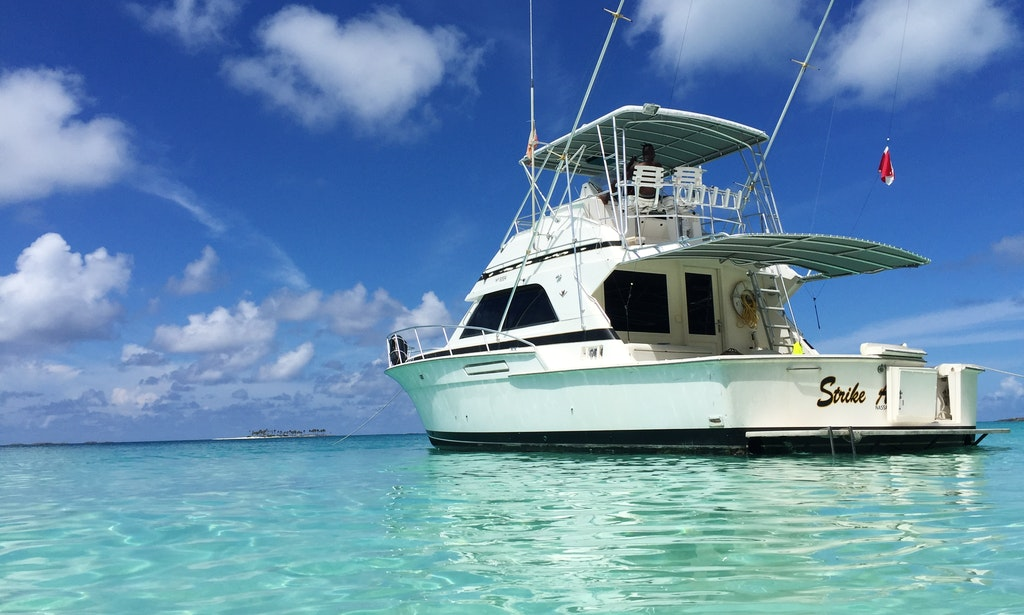 43 39 bertram deep sea fishing nassau first strike charters for Nassau fishing charters