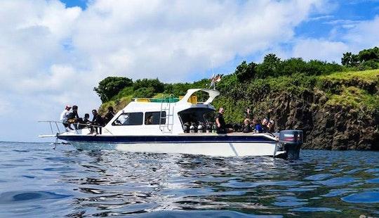 Scuba Diving Tour In Bali Indonesia